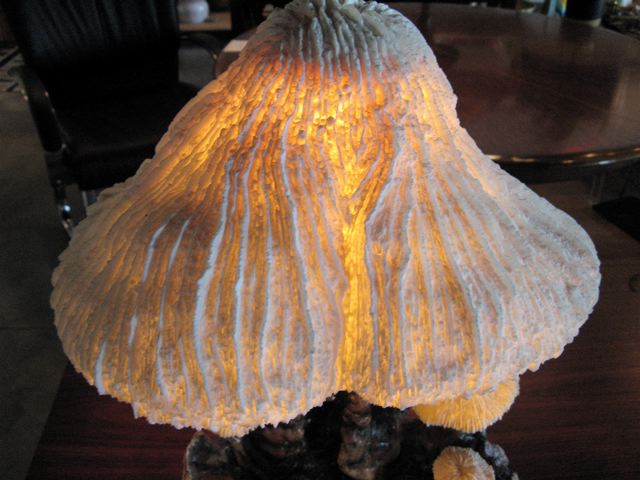 Magic Mushroom Table Lamp ...